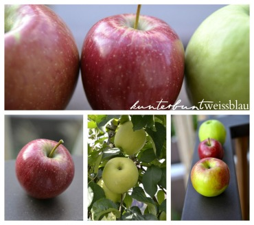 Apfelernte kwb