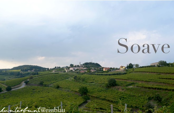 Soave XIII