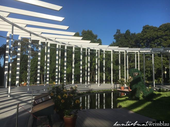 botanic-garden-affen