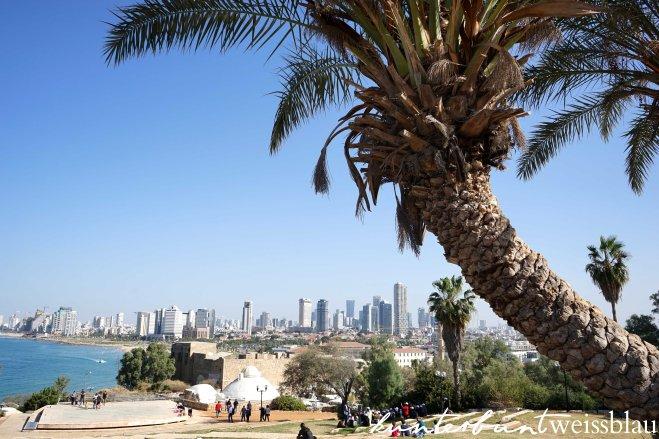 jaffa_telaviv-blick