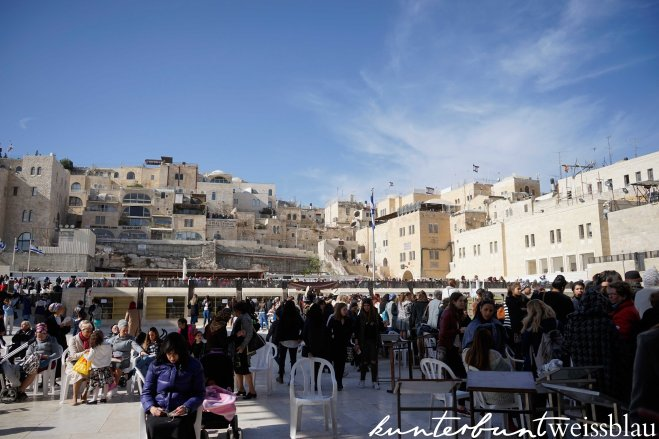 westernwall-back