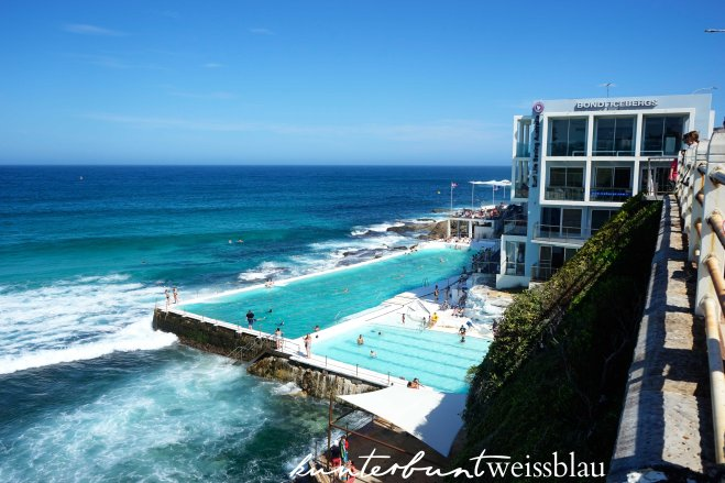 bondi-swimmingpool