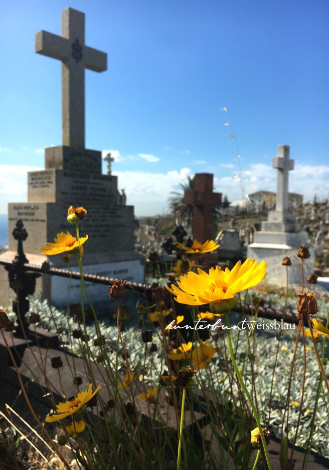 cemetry_coogee